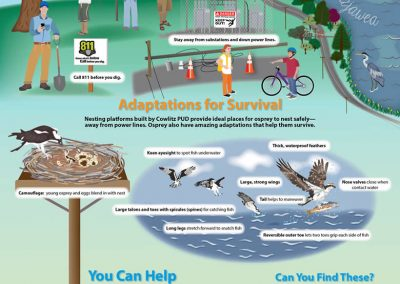 """""""Survival for Osprey and You!"""" Poster"""