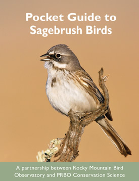 Pocket Guide to Sagebrush Birds