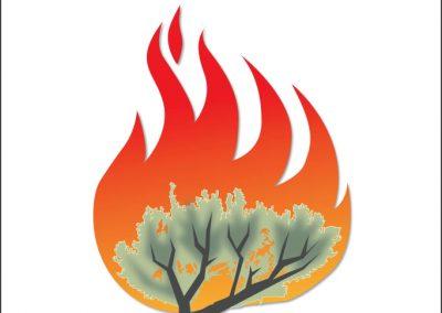 FireWorks Curriculum Featuring the Sagebrush Ecosystem